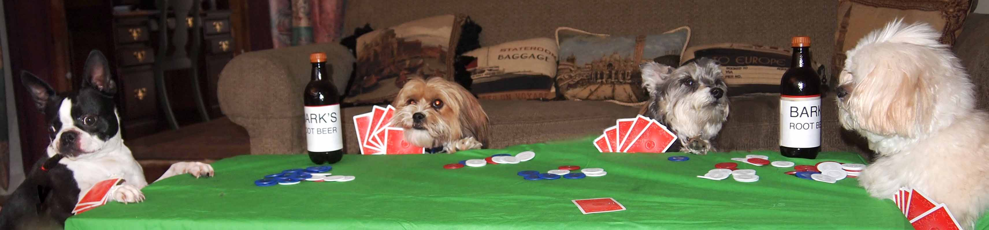 playing poker Practice your moves play high stakes poker against the computer to improve your skills in this free online poker game.