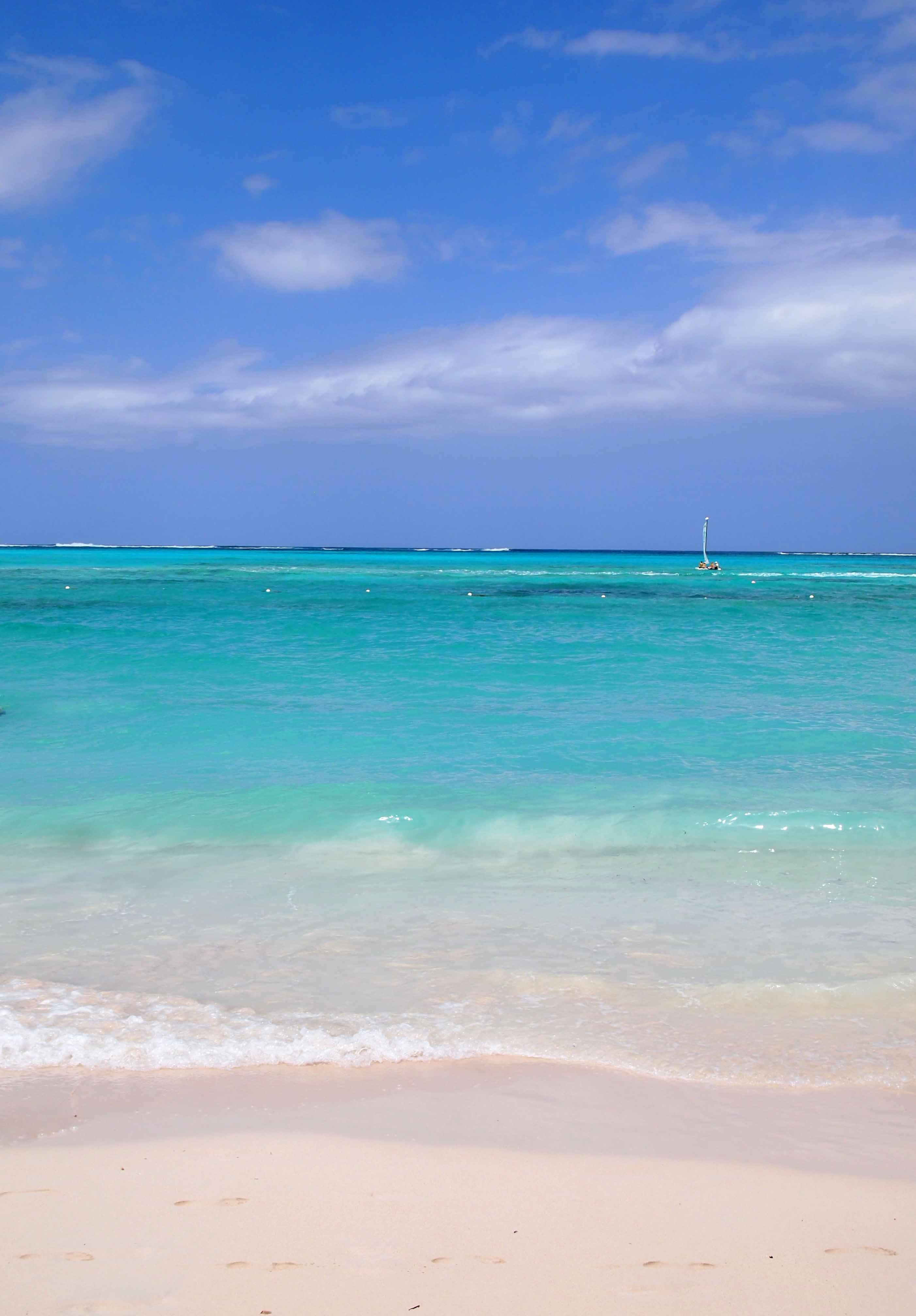 Join Me on a Virtual Beach Vacation  Carolyn Dube